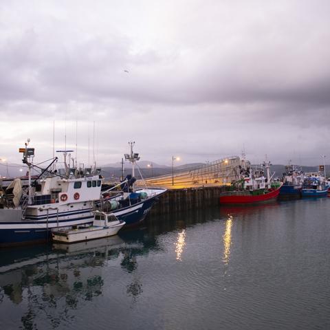 Porto di Santona al mattino