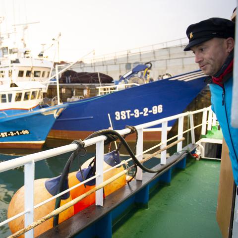 Barche nel porto di Santona